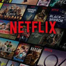 Netflix 2 screen HD Premium Account 1 Month